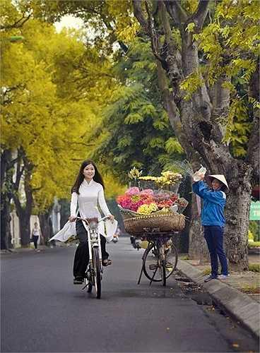 Yên Phụ là con đường duy nhất còn hai hàng cây cơm nguội vàng.