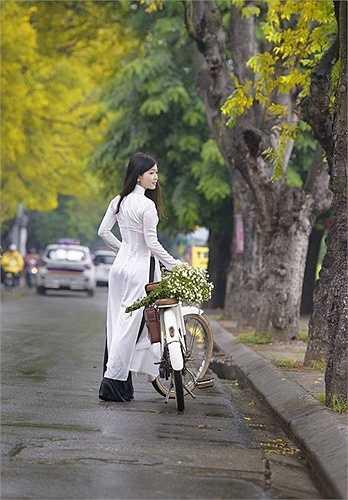 Hình ảnh đầy cảm xúc trên con đường trải dài lá vàng.