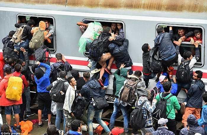 Những người tỵ nạn tranh chấp các suất cuối cùng lên chuyến tàu chở người từ ga Zagreb đến ga Tovarnik, Croatia cuối tuần vừa qua
