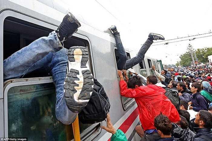 Tình hình người tỵ nạn vẫn rất phức tạp và cần có sự quan tâm lớn của châu Âu