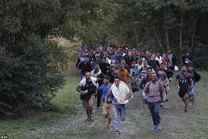 Người tỵ nạn nhanh chóng vượt qua biên giới Hungary để đến với chân trời mới