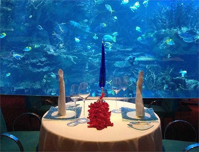 Hải sản và thưởng thức dưới những bể cá lớn như viện hải dương học