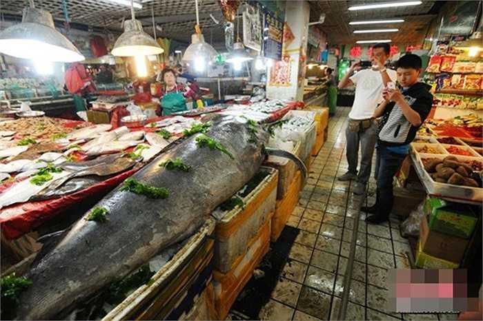Con cá này sau đó được bán lại cho cửa hàng thủy sản với giá 8000 yên (khoảng 28 triệu đồng)