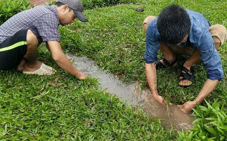 Nhiều thanh niên tìm đến các dòng chảy mới tạo thành khi nước dâng để bắt cá, tôm.
