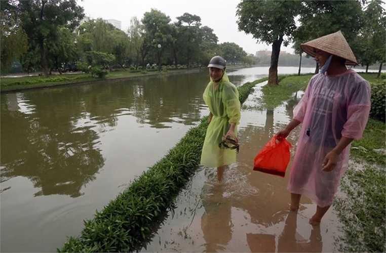Các tuyến đường xung quanh hồ Đền Lừ đều ngập sâu, người dân ít qua lại, trừ những người đi bắt cua, cá.