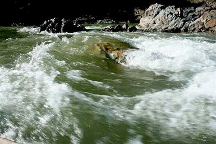 Không ít ngư dân đi săn cá trên sông Đà - vùng có cá chiên to, khỏe, phải đối diện với dòng nước dữ và những con 'quái vật sông nước'. Người dân vừa lặn xuống nước sâu, vừa có thể bị cá quẫy, kéo cho mệt lử, thậm chí bị thương khi gặp cá to khỏe.