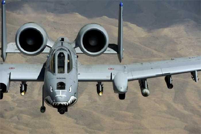 Những chiếc máy bay A-10 được đưa vào phục vụ lần đầu tiên trong Chiến tranh vùng Vịnh năm 1991 với thành tích tiêu diệt được 900 xe tăng của quân đội Iraq, 2,000 xe quân sự và 1,200 khẩu pháo.
