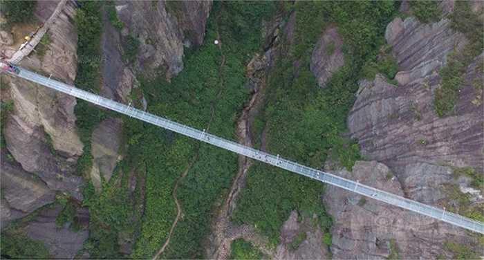 Vì nền cầu trong suốt nên nhiều người sẽ sợ hãi khi bước qua