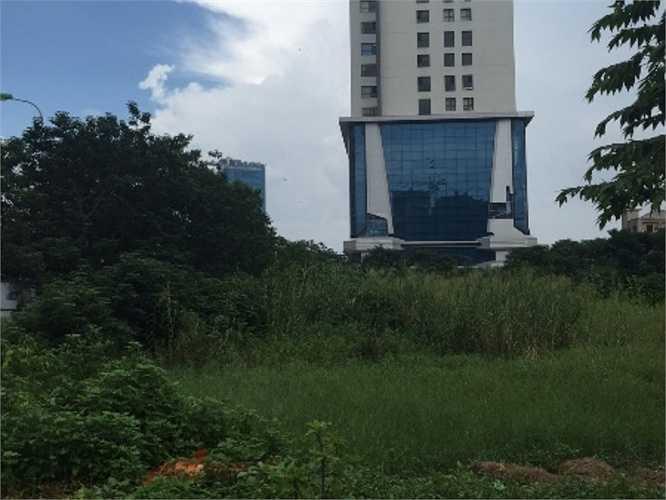 Mảnh đất vàng bỏ hoang nằm trên lô đất 4.1 Lê Văn Lương mấy ngày nay đã được trưng biển. Lúc này, người dân sống xung quanh mới có dịp biết được chủ nhân thực sự của nó là ai.