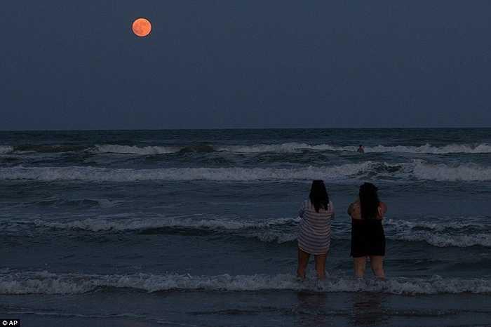 Những khách du lịch tại vùng biển Bắc Mỹ ngắm nhìn siêu trăng máu