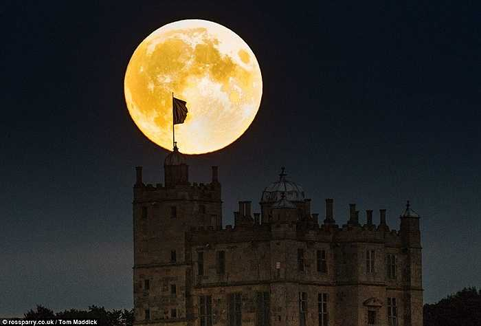 Mặt trăng khổng lồ và rực sáng trên bầu trời