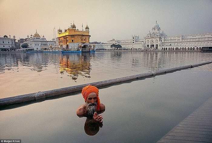 Một người hành hương thực hiện nghi lễ tắm ở hồ Sarovar gần ngôi Chùa Vàng của người Sikh nổi tiếng tại Ấn Độ