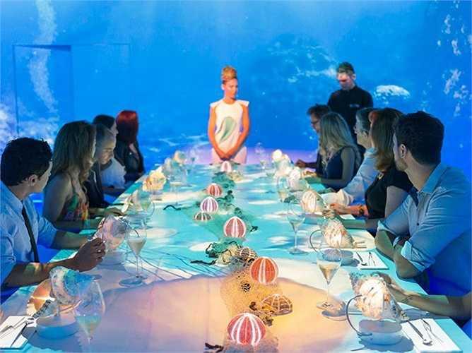 1. Sublimotion, Ibiza, Tây Ban Nha ( thực đơn đắt nhất trị giá 3.377 USD/2 người, gồm 20 món): Nhà hàng Sublimotion, thuộc khách sạn Hard Rock ở Ibiza, do bếp trưởng Paco Roncero điều hành. Với khoảng 25 nhân viên phục vụ, các thực khách sẽ có những trải nghiệm tuyệt vời như thưởng thức cocktail tự pha chế, ngắm hình chiếu 360 độ và các món ăn được chế biến theo kĩ thuật sáng tạo.