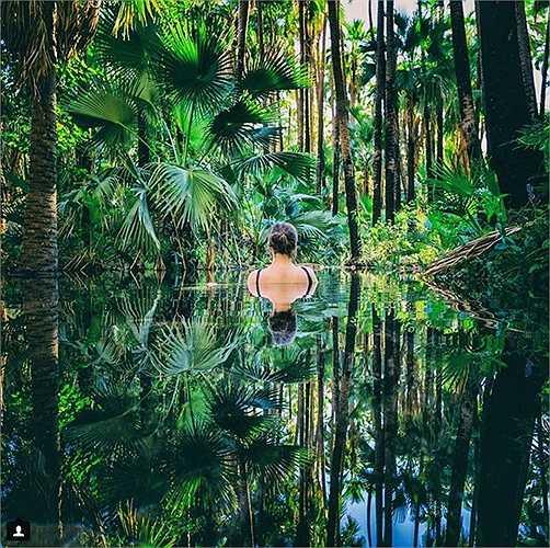 Đắm mình trong làn nước trong xanh ở Zebedee Springs, công viên El Questro hoang dã