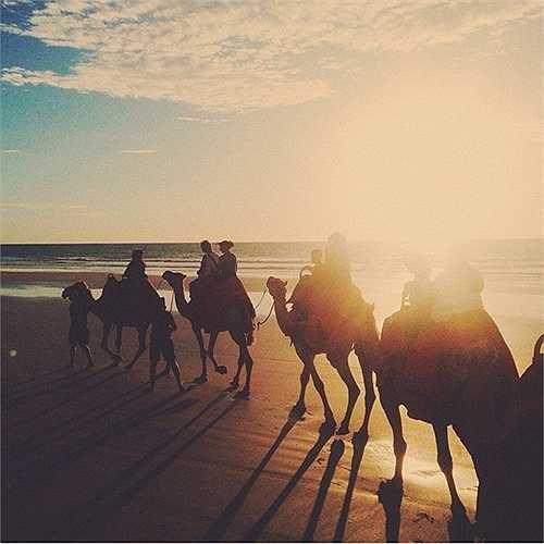 22 km bờ biển Cable, Broome, là chốn thiên đường giao nhau giữa làn nước biển xanh ngọc và chân trời đỏ. Cưỡi lạc đà là thú chơi phổ biến ở đây.