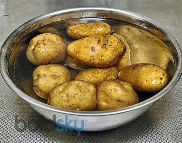 Khoai tây: Khoai tây có chứa chất độc trong thân cây và lá. Nếu khoai tây chuyển sang màu xanh lục thì rất độc. Nếu ai ăn phải khoai tây xanh, gây suy yếu và thậm chí có thể bị hôn mê.