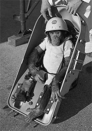 Tháng 11/1961, NASA đi đến một quyết định lịch sử khi đưa chú tinh tinh Ham. Trong 6 phút bay, con tinh tinh Ham đã ở tình trạng không trọng lượng khi tên lửa tăng tốc trên bầu trời tới khoảng 804,7 km/h. Tên lửa rơi xuống Đại Tây Dương trong 16 phút, 39 giây sau đó và khi đội cứu hộ tiếp cận được n