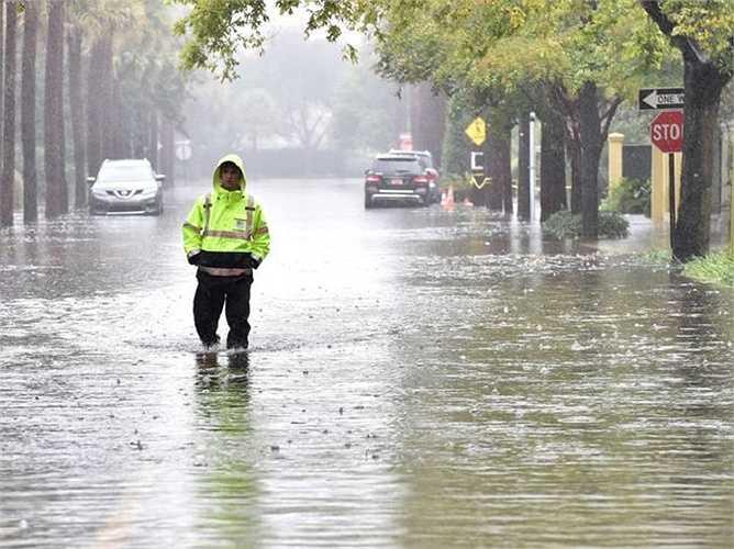 Một lính cứu hỏa đi bộ trên đường ngập lụt ở thị trấn Charleston, South Carolina