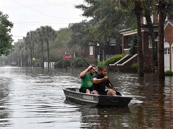 Bơi thuyền trên phố