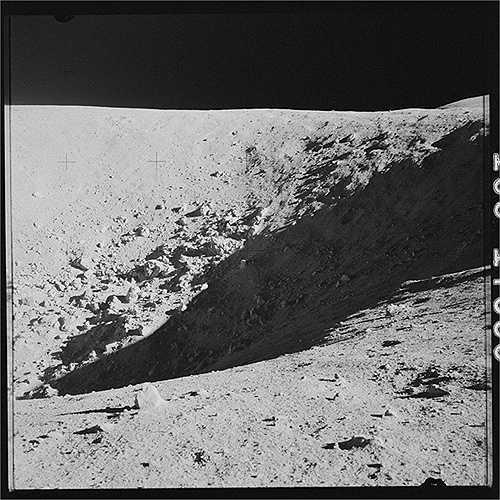 Đoàn phi hành gia đã mang theo hàng trăm hạt giống khi thực hiện nhiệm vụ, nhiều hạt trong số đó đã nảy mầm và được gọi là cây Mặt Trăng. (Nguồn: Sputniknews)
