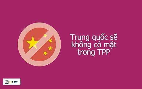 Mỹ muốn TPP sẽ là điểm chốt mới của họ tại Châu Á sau nhiều năm Mỹ đã lún quá sâu vào khu vực Trung Đông. Ngoài ra, nhiều học giả còn cho rằng Mỹ muốn sử dụng TPP để tạo ra một nền kinh tế hợp nhất trong khu vực có thể đối trọng lại với sự phát triển của Trung Quốc.