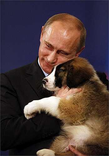 Chú chó Karakachanka, giống chó chăn cừu của Bulgaria, là món quà ông Putin nhận được từ người đồng cấp Bulgaria, Tổng thống Boiko Borissov