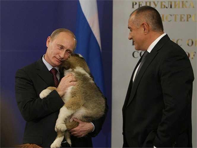 Quốc vương Jordan từng tặng cho ông Putin 3 chú ngựa đua Arab và cựu Tổng thống Pakistan Pervez Musharraf cũng tặng cho ông Putin 3 chú ngựa khác