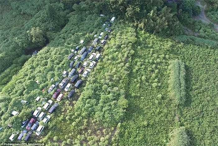 Nhà máy hạt nhân Fukushima giờ đây chìm trong cỏ mọc, u ám như một nghĩa địa đã bị bỏ hoang hàng rất nhiều năm.