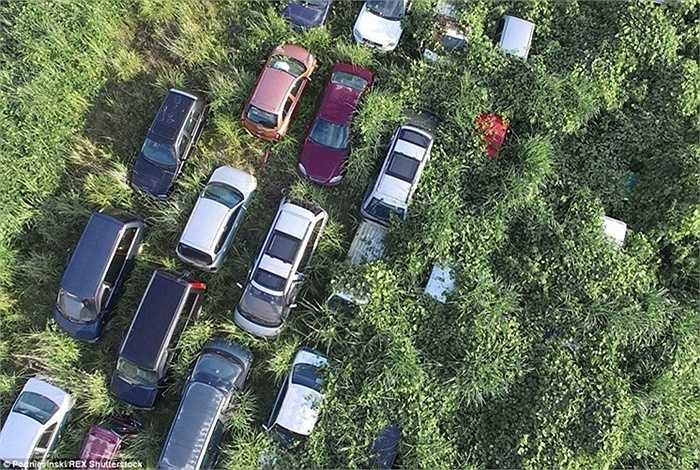Thê thảm hơn là có hàng ngàn chiếc ô tô nằm ở lại đây và trở thành đống phế liệu mãi chưa được di dời, xử lý.