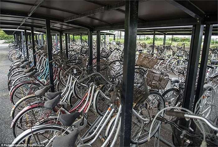 Một nơi tập trung xe đạp không còn sử dụng được nhưng trông không khác gì một bãi gửi xe vẫn đang hoạt động.