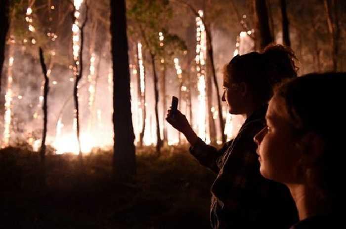 Cháy rừng ở bang Victoria, Australia