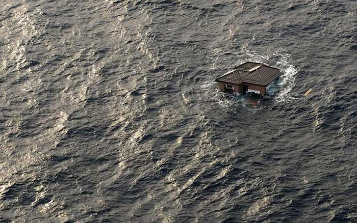 Sóng thần Tōhoku 2011. 2011 là một năm đen đủi của Nhật Bản. Sau thảm họa kép hồi đầu năm, đến gần cuối năm, trận sóng thần Tōhoku bất ngờ đổ bộ khiến cuộc sống của 200.000 người bị ảnh hưởng. Số tiền mà Ngân hàng thế giới phải bỏ ra để khắc phục thiệt hại là 235 tỷ USD