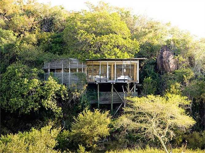 3. Singita Kruger tại Công viên Quốc gia Kruger, Nam Phi: Đây là nơi nghỉ dưỡng tuyệt vời cho những người yêu thích thiên nhiên và động vật hoang dã với giá phòng khoảng 1.270 USD/đêm.