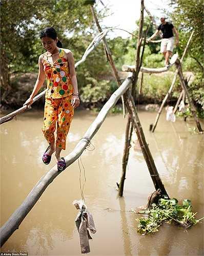Cầu khỉ ở Việt Nam cũng có thể là thách thức với những ai không ưa mạo hiểm
