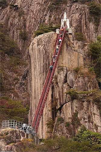 Cây cầu dốc đứng bắc qua một khe núi lớn ở tỉnh Park Daedunsan, Hàn Quốc cũng thách thức sự can đảm của nhiều người