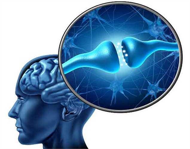 Nó kích thích dây thần kinh: Một số báo cáo nói rằng thành phần này làm nhiễu loạn sự cân bằng của truyền phát thần kinh và điều này có thể dẫn đến nhiều vấn đề sức khỏe. Nói tóm lại, hệ thống thần kinh có thể bị kích thích sau khi ăn thực phẩm có chứa thành phần này.