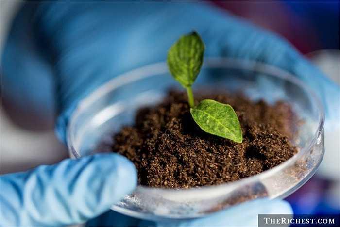Nhà bảo tồn đất đai. Đất đai được coi là điều quan trọng nhất trong việc nuôi trồng các giống cây, tuy nhiên, đất tốt luôn thiếu hụt và thường xuyên phải bảo tồn, chăm sóc. Đó là nhiệm vụ dành cho môn số nhà khoa học chuyên môn để đảm bảo nguồn đất đai cho thế giới