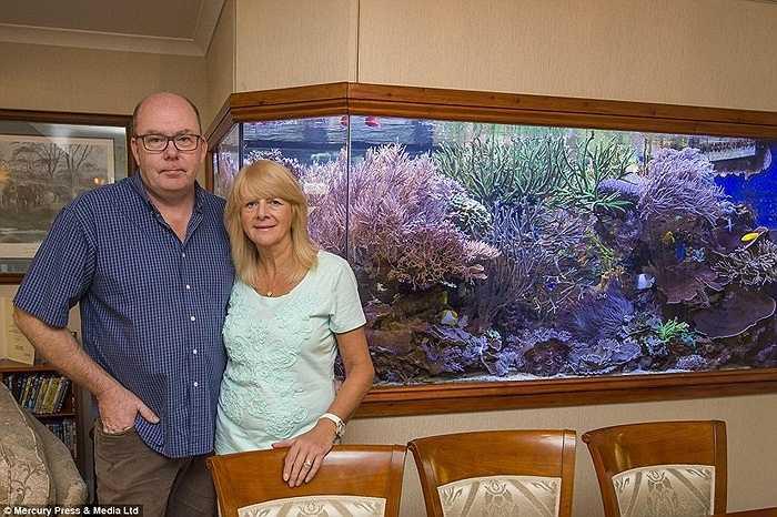 Bể thủy sinh khổng lồ được thiết kế độc đáo chính giữa căn nhà và có thể ngắm nhìn từ 3 phòng ở tầng một. Vợ anh, Kay cũng đã dần chấp nhận niềm đam mê đặc biệt của chồng.