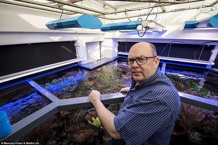 Martin đã nhập khẩu nửa tấn san hô sống, nhiều máy móc phức tạp, máy bơm và máy tính để điều khiển hoạt động của bể cá. Số tiền bỏ ra mỗi năm lên tới 4000 bảng Anh (khoảng 140 triệu đồng).