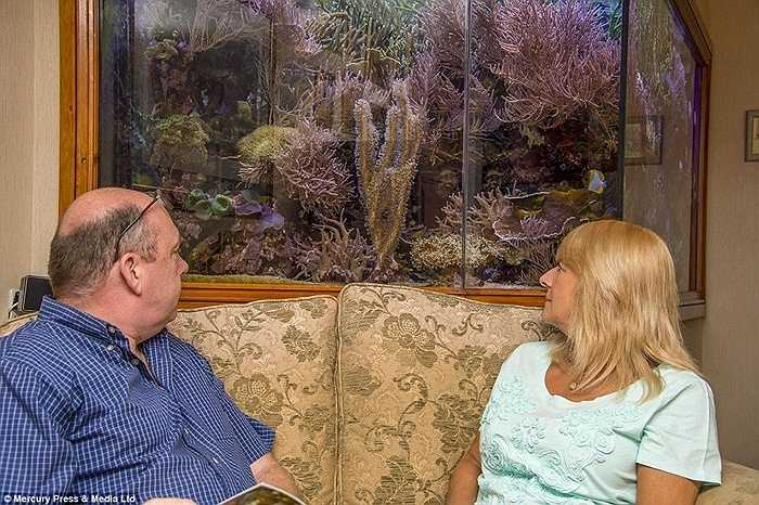 Một người bạn của Martin tiết lộ anh vẫn hi vọng sẽ sở hữu một bể cá cảnh lớn hơn trong tương lai mặc dù Kay đã khẳng định đây là lần cuối cùng.