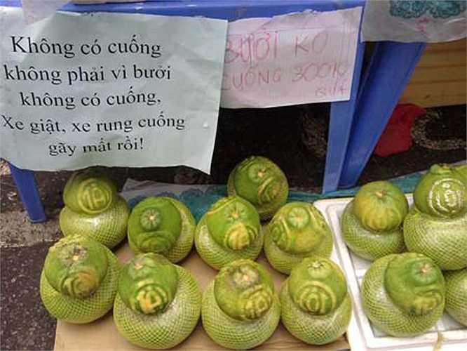 Một cách giải thích hài hước khi những trái bưởi bị rụng cuống.