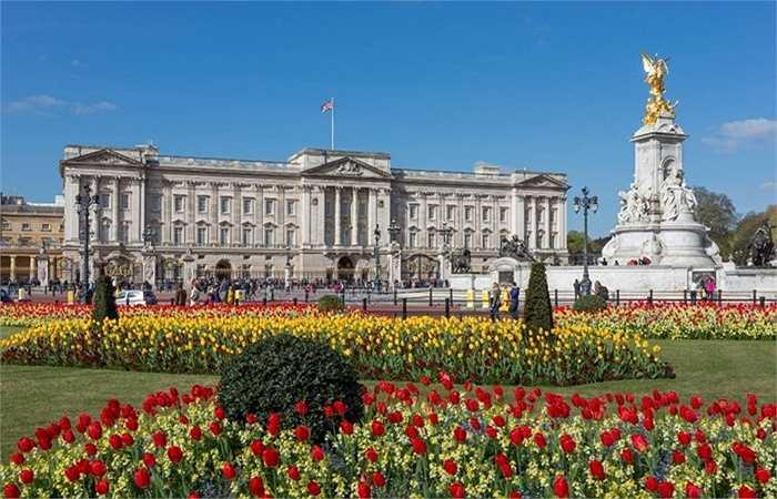 3. Nếu đã từng đến thăm cung điện Buckingham hay thấy nó trên phim ảnh, có lẽ bạn biết nó rộng lớn đến mức nào. Với diện tích 77000 mét vuông, 775 phòng, số lượng phục vụ trong gia đình Hoàng gia lên tới 800 người bao gồm quản gia, đầu bếp, người giúp việc, an ninh và thậm chí là nhân viên quản lí đồng hồ.