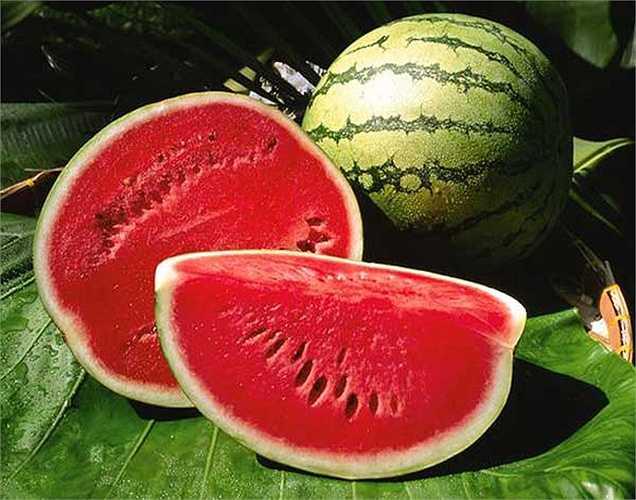 Dưa hấu là loại quả tốt cho da và thận của bạn quá. Trong thực tế, ăn các loại thực phẩm dưỡng ẩm như vậy là tốt hơn rất nhiều so với uống nhiều nước để giữ ẩm cơ thể của bạn.