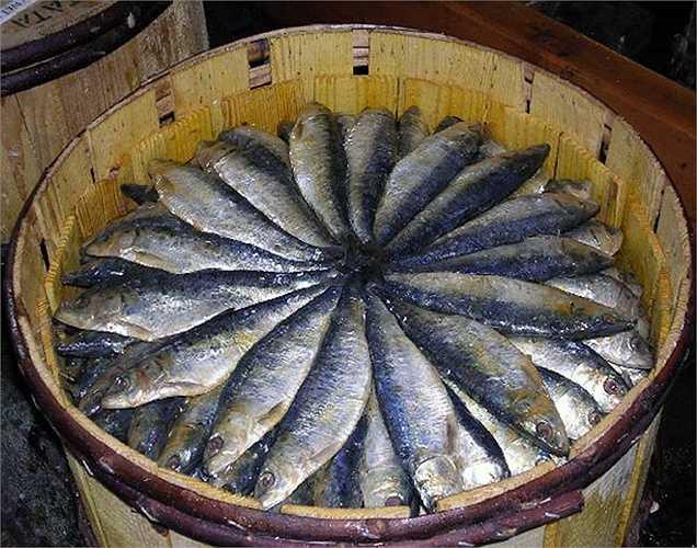 Cá mòi: là loại cá tốt nhất, bạn nên ăn để hấp thụ tất cả các loại vitamin. Những con cá nhỏ này rất giàu EPA, DHA và axit béo omega-3 rất cần thiết cho sức khỏe tim mạch. Bạn chỉ cần ăn chưa đủ 100 gram cá này cũng đủ cho 1 người lớn.