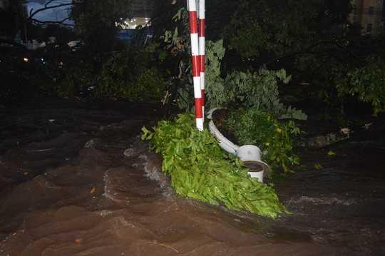 Không chỉ xe máy, những cây cổ thụ cũng bị nước cuốn phăng trên đường Nguyễn Tất Thành
