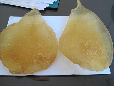 Bong bóng cá đường loại 1 rao bán với giá từ 3 - gần 4 triệu đồng/kg. Thậm chí, có loại bóng cá đường đặc biệt, được rao bán tới 10 triệu đồng/kg.