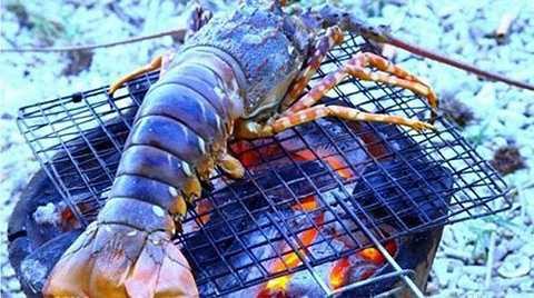 Tôm hùm đảo Bình Ba (Nha Trang) có giá 900.000 đồng đến 1,2 triệu đồng/kg, nhưng nhiều người sẵn sàng chi tiền để thưởng thức loại đặc sản ngon nức tiếng này.