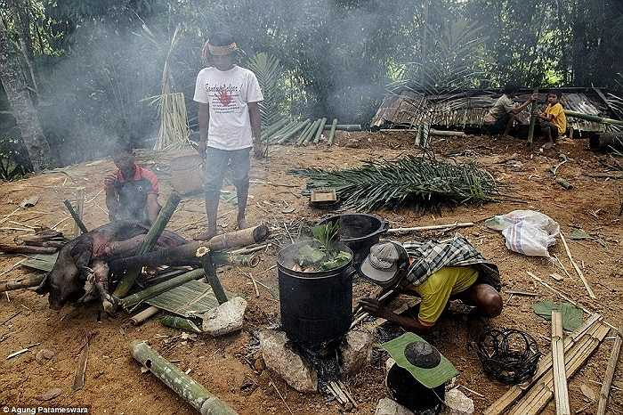 Người đàn ông Toroja nướng một con lợn theo cách truyền thống trước khi thực hiện nghi lễ Ma'nene