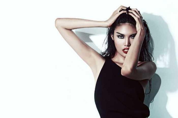 Lan Khuê từng là một người mẫu nổi tiếng với phong cách cá tính, lạnh lùng cùng gương mặt sắc sảo.