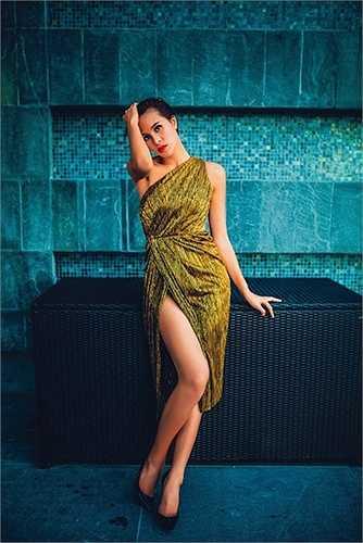 Người đẹp sinh năm 1990 từng chiến thắng trong cuộc thi Siêu mẫu Việt Nam 2012 và trở thành một gương mặt quen thuộc trên các sàn diễn thời trang